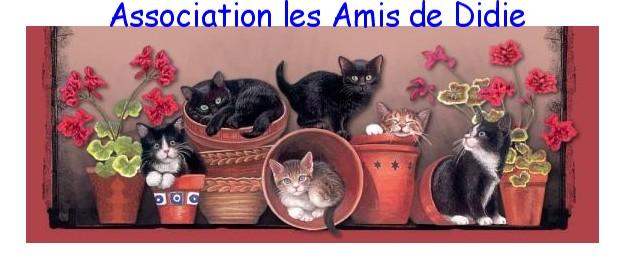 Les Amis de Didie - Protection et non-prolif�ration des chats (Essonne)