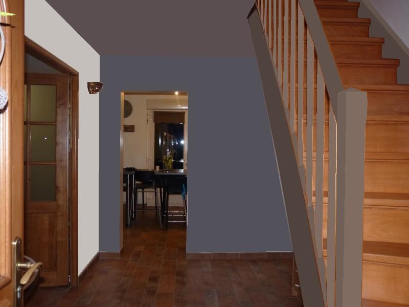 Besoin de conseil pour peinture entr e et escalier photos for Peinture pour entree