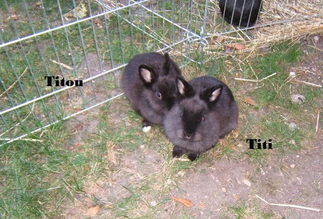 Titi et Titou