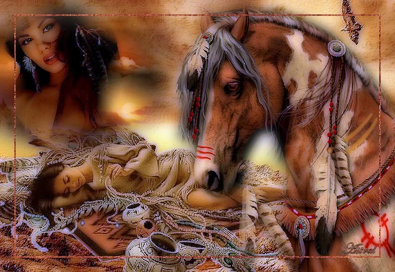 Célèbre cheval indien HY12