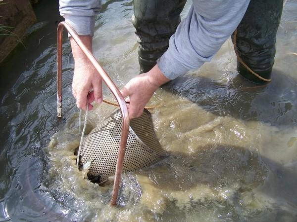 Tout sur la pêche sur sakhaline