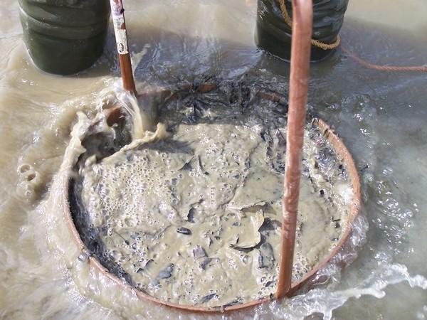 Les balalaïkas pour la pêche dhiver