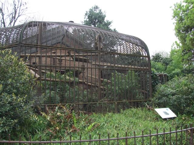 Leszoosdanslemonde afficher le sujet m nagerie du jardin des plantes 2011 - Animaux du jardin des plantes ...