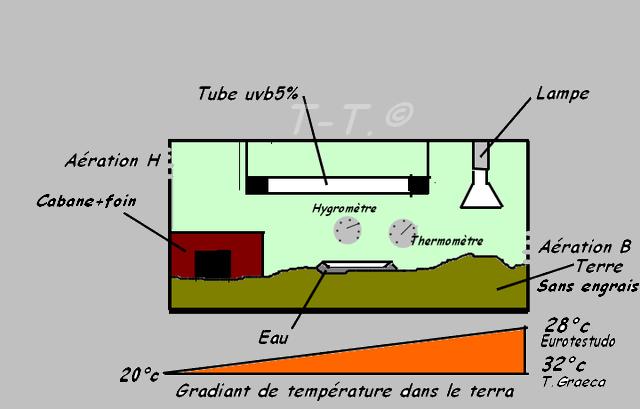 lampe chauffante terrarium tortue