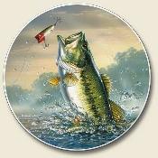 I Live To Fish