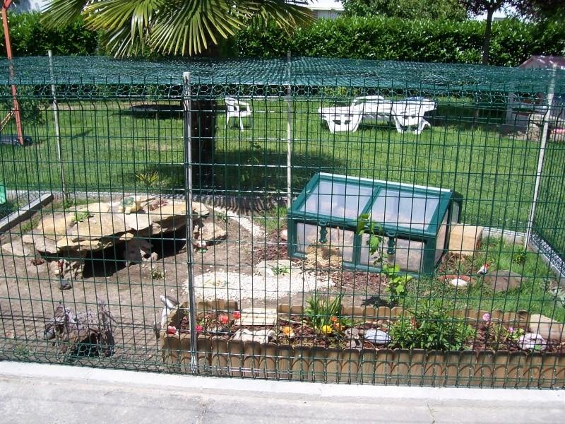 Les enclos pour adultes for Zoo exterieur