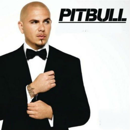 Pitbull feat. Chris Brown - International Love (Jump Smokers Radio Edit)
