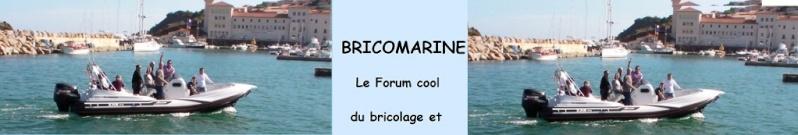 Bricomarine