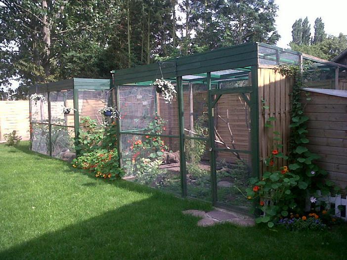 Voliere exterieur conseils et avis page 2 - Jardin interieur montreal colombes ...