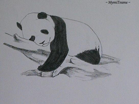 Mes dessins page 1 - Dessin d animaux facile a reproduire ...