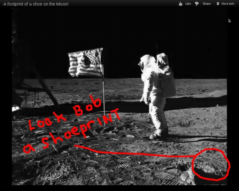 funny moon landing - photo #25
