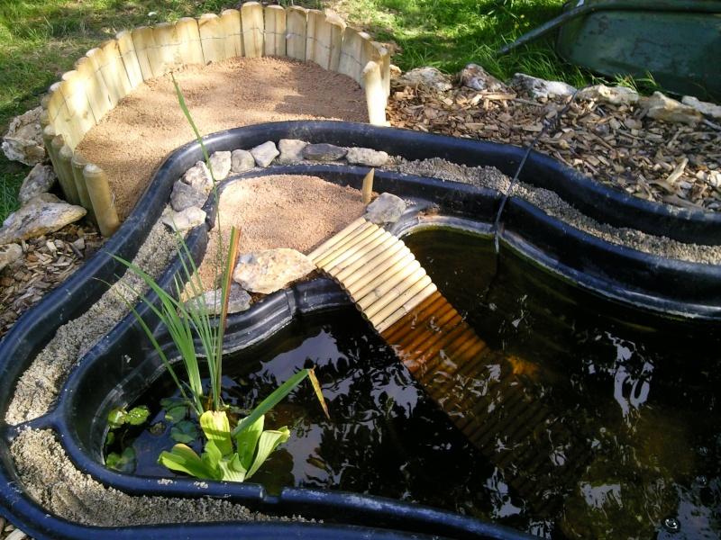 Best bassin de jardin tortue photos matkin for Bassin exterieur pour tortue de floride