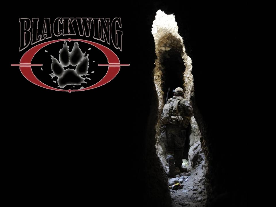 Blackwingcorp