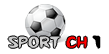 مشاهدة مباراة تشيلسي و سندرلاند 14-1-2012 بث مباشر ch110.png