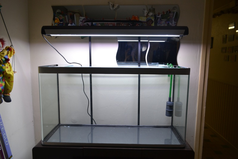 mon aquarium 320l. Black Bedroom Furniture Sets. Home Design Ideas