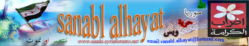 www.saada.syriaforums.net