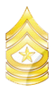 ATC3 Senior Master Sergeant