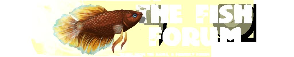 The Fish Forum