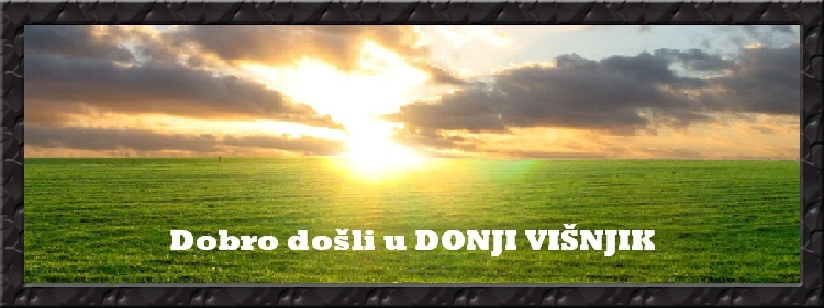 Donji Višnjik