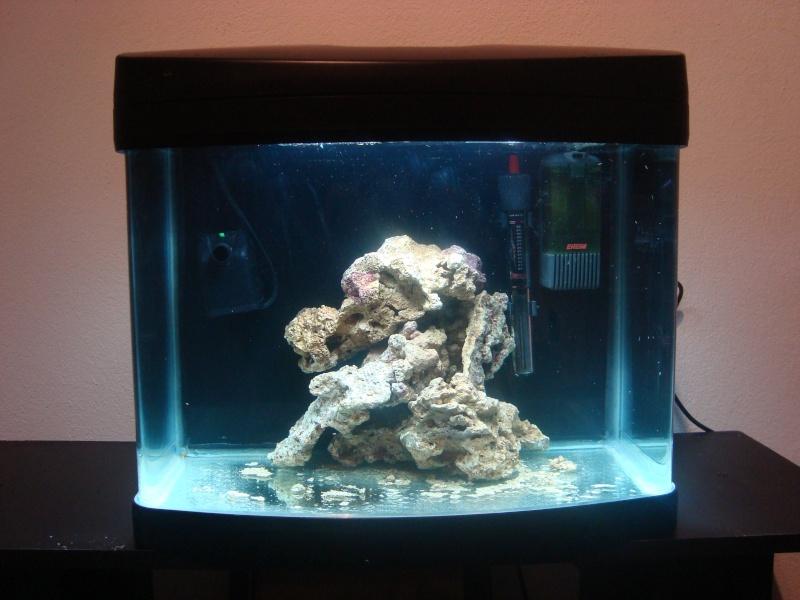 Clos] Nano aquarium Wave Cube x 40 NEUF