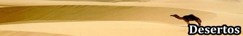 http://i40.servimg.com/u/f40/17/10/80/01/desert10.jpg