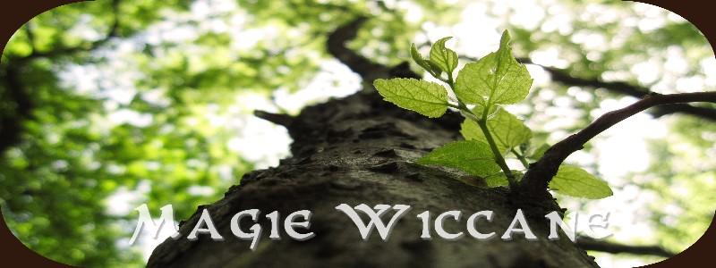 Magie Wiccane
